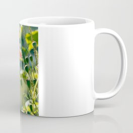 Backlit poppies Coffee Mug