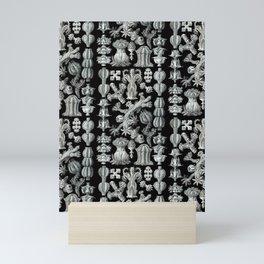 Ernst Haeckel - Gorgonida Mini Art Print