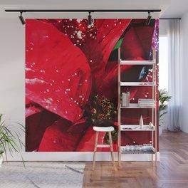 Glistening Poinsettia Wall Mural