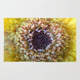 Macro Yellow Flower Center Rug