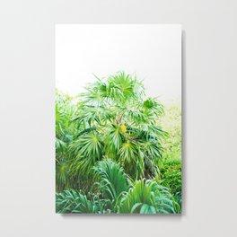 Summer vibes - caribbean breeze - palm tree Metal Print