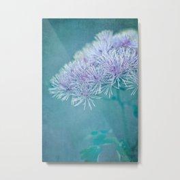 dreamy nature Metal Print