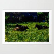 Chillin' Cows  Art Print
