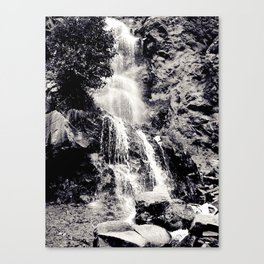 Waterfall 3, Colorado Canvas Print