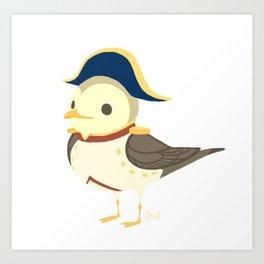Bonaparte Gull Art Print