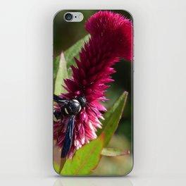 Unseen Beauty iPhone Skin