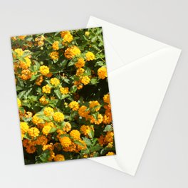 Blooming Lantana Plant Stationery Cards