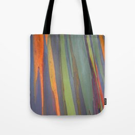 Rainbow Eucalyptus Magic Tote Bag