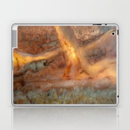 Idaho Gem Stone 24 Laptop & iPad Skin