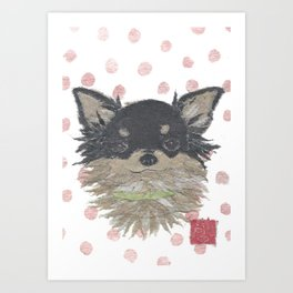 CHIHUAHUA, Long Haired Chihuahua, Dog Art Print