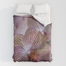 Blooming orchids Comforters