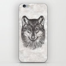Canis Lupus (Gray Wolf) iPhone & iPod Skin