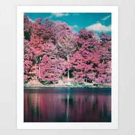 Pinky Potpourri Art Print
