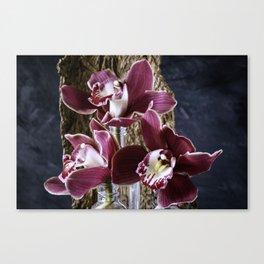 Magenta Orchids Orchidaceae flower blooms Canvas Print