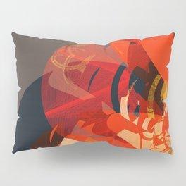 102117 Pillow Sham