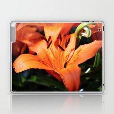 Garden Fire Laptop & iPad Skin