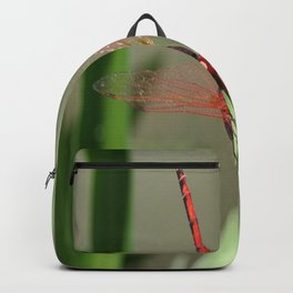 Beautiful Red Skimmer or Firecracker Dragonfly Backpack