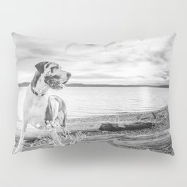 Harlequin Beach Sunset Pillow Sham