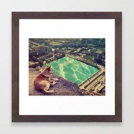 lobo solitario Framed Art Print