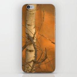 Autumn forest iPhone Skin