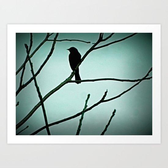 Another bird Art Print