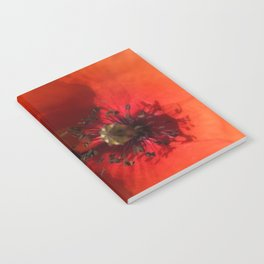 Ladybug Poppy Photography Notebook