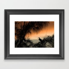 Home to Roost Framed Art Print