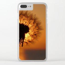 Dandelion in sunset light Clear iPhone Case
