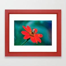 Botanical Garden No. 1 Framed Art Print
