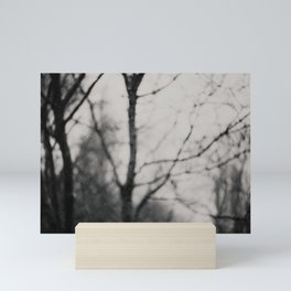 the silence of the forest ... Mini Art Print