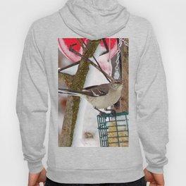 Mockingbird Hoody