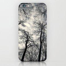 Sky-reaching Trees iPhone 6s Slim Case