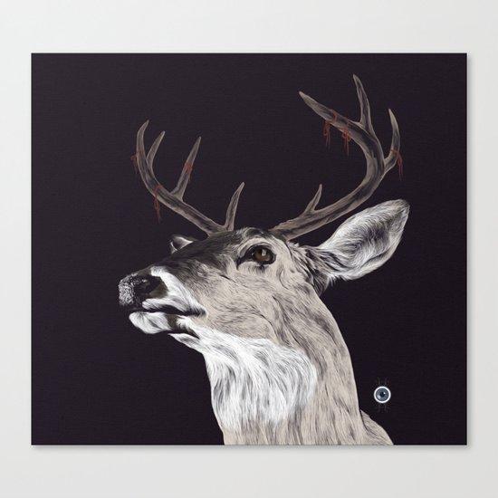 Deer (remindeer) Canvas Print