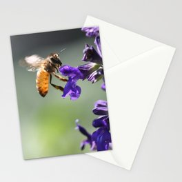 Macro Bee  Stationery Cards