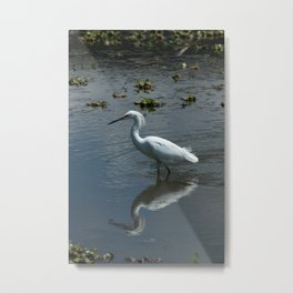 Great Heron in a Lake Metal Print