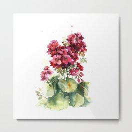 Watercolor geranium flowers Metal Print