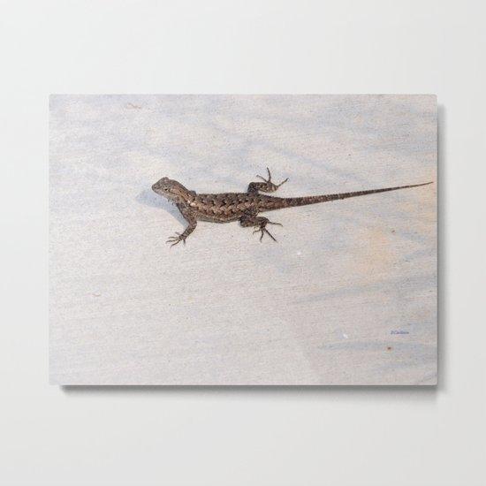 Heat-Loving Lizard Metal Print