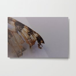 The Beat of a Butterfly's Wing Metal Print
