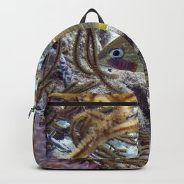 Watercolor Fish, French Grunt 01, St John, USVI Backpack