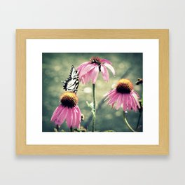 Pink Beauties Framed Art Print