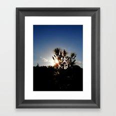Sand Lilly Sunset Framed Art Print