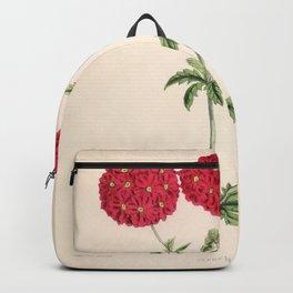 Verbena Lustrous Vintage Floral Flower Hand Drawn Scientific Illustration Backpack