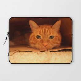 Cat in a Bag Laptop Sleeve