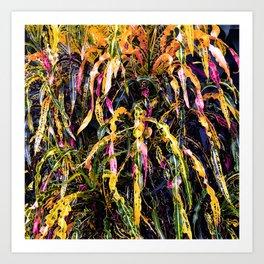 SanFrancisco/ Croton Art Print