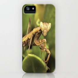 Praying Mantis On Green Garden Background iPhone Case