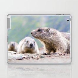 Alpine Marmots Laptop & iPad Skin