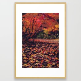 Momiji floor Framed Art Print