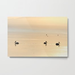 WHITE PELICANS - SUNSET - SALTON SEA Metal Print