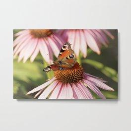 Butterfly Pink Flowers Metal Print