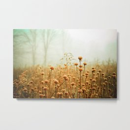 Daybreak in the Meadow Metal Print
